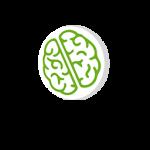 سلامت مغز و اعصاب